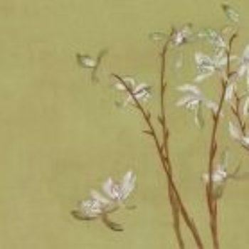 清初六大家之一恽寿平没骨花卉的艺术特色