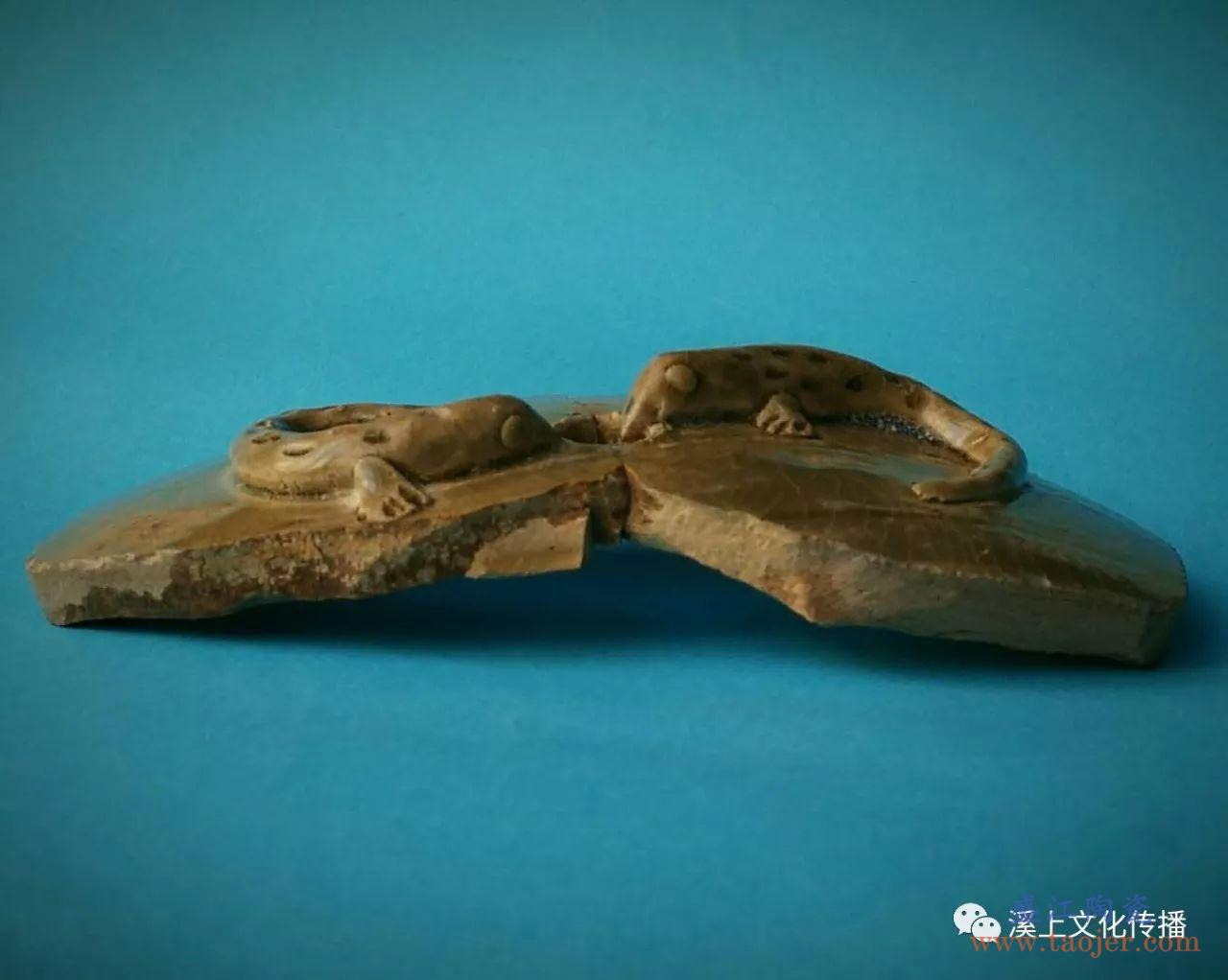 溪上原创丨沈建乔:从越窑青瓷上的弹涂鱼说起
