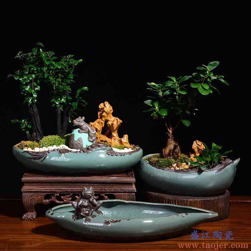 创意个性大号口径多肉盆景花盆假山造景文竹菖蒲绿植小盆栽陶瓷盆
