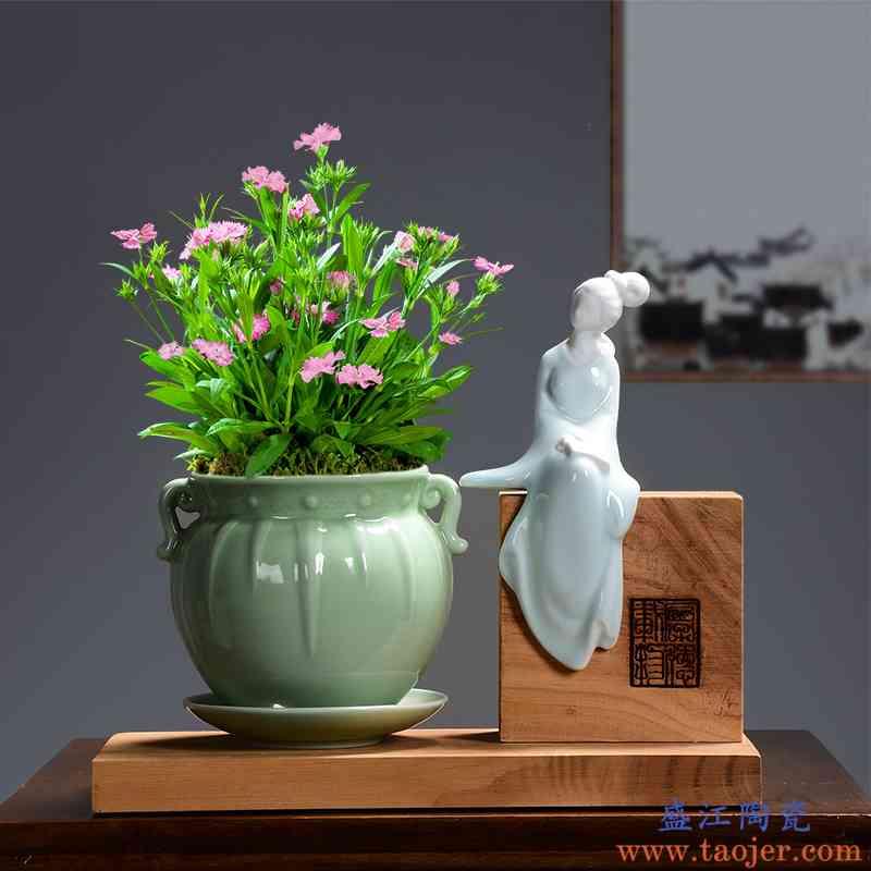 陶瓷多肉陶瓷盆栽绿植现代简约客厅带托盘创意个性花卉盆景盆专用