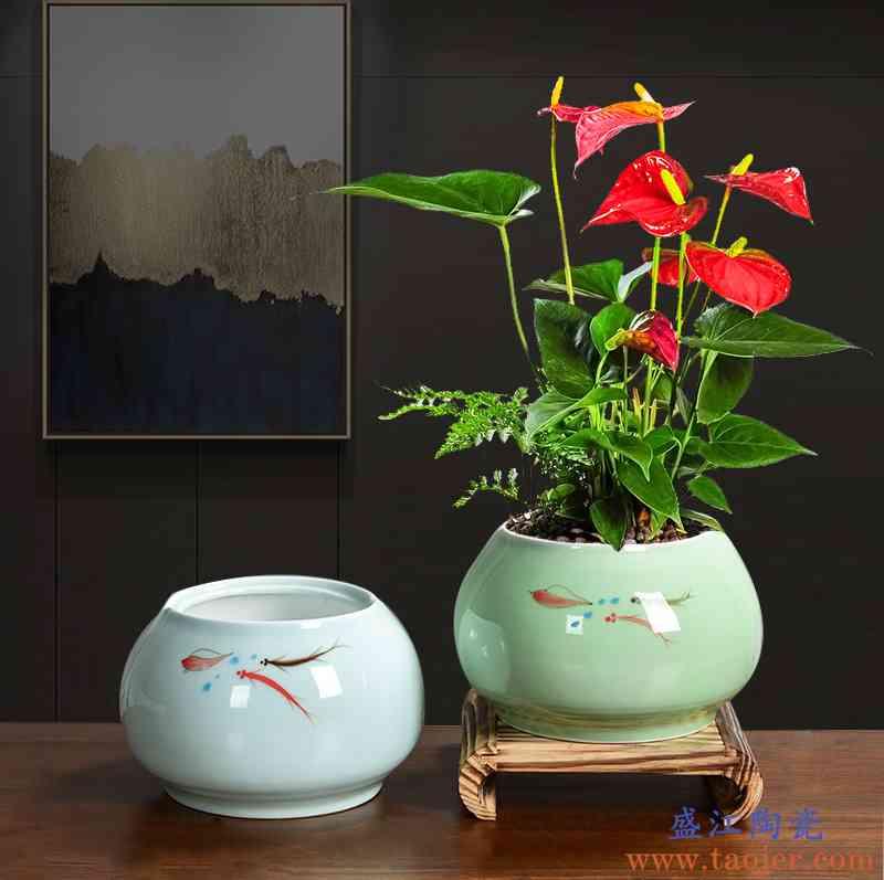 青瓷釉下手彩个性简约蝴蝶君子兰花玫瑰杜鹃专用大号陶瓷花盆托盘
