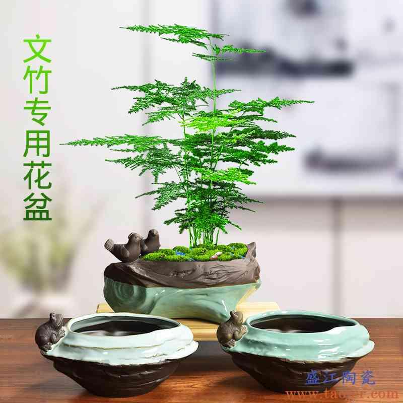 陶瓷文竹专用绿植个性青蛙雕塑造型木桩个性创意紫砂胎绿萝大花盆