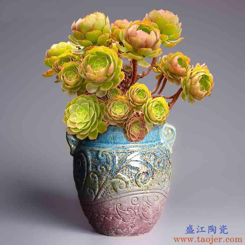创意个性大口径陶瓷多肉花盆家用室内简约桌面绿植吊兰绿萝兰花盆