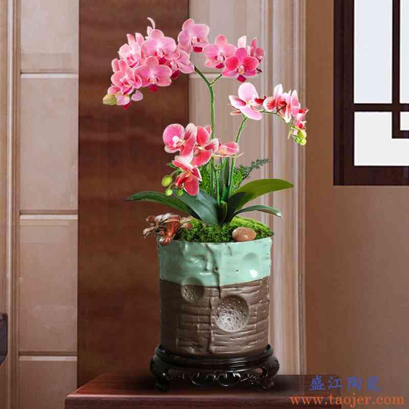 哥窑花盆蝴蝶兰茉莉花满天星专用新中式透气简约带底座微景观花器