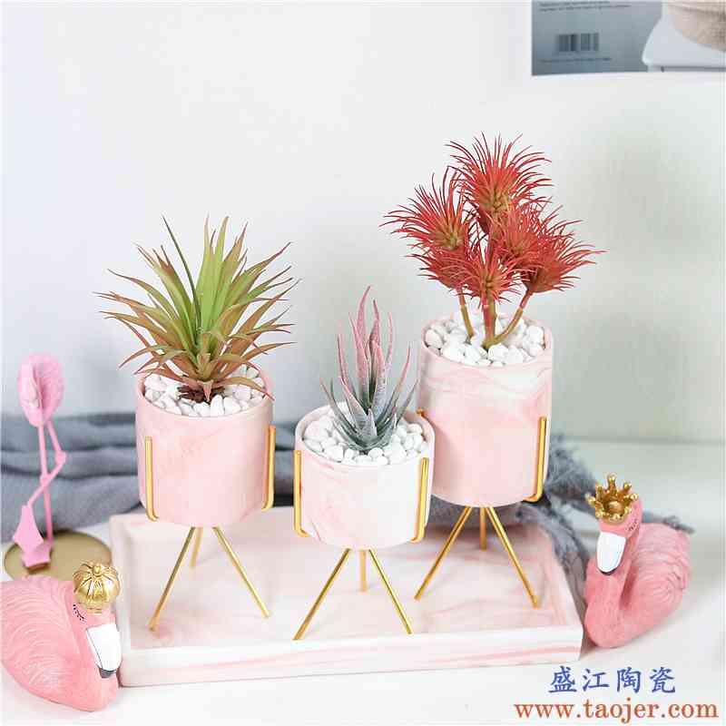 ins北欧小清新多肉植物白色陶瓷小花盆创意个性金色铁艺绿植花盆
