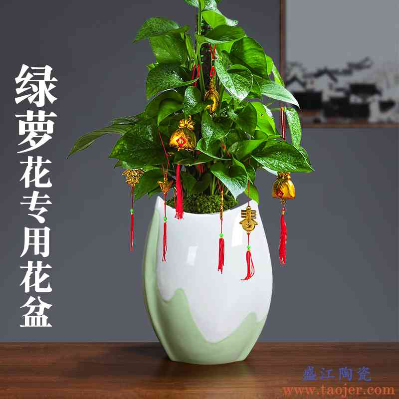 陶瓷青瓷花盆绿萝绿植专用幻彩紫砂胎质粗陶透气透水带托盘中号