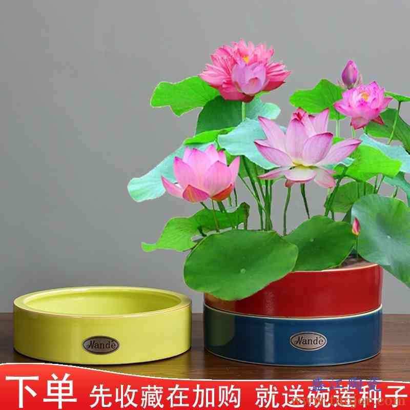 吊兰绿萝专用陶瓷花盆大号水培富贵竹一叶碗莲铜钱草北欧个性简约