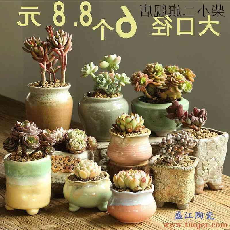 多肉花盆陶瓷粗陶室内多肉植物大小口径老桩肉肉盆栽陶瓷花