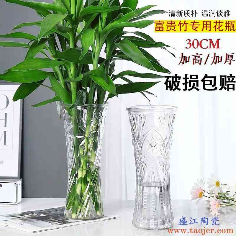 大号玻璃花瓶新款加厚透明客厅摆件水培富贵竹百合插干花陶瓷花瓶