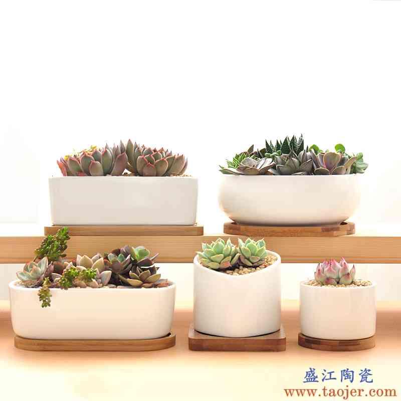 宣福多肉植物花盆带托盘简约创意肉肉长方形白瓷陶瓷拼盘绿植盆器