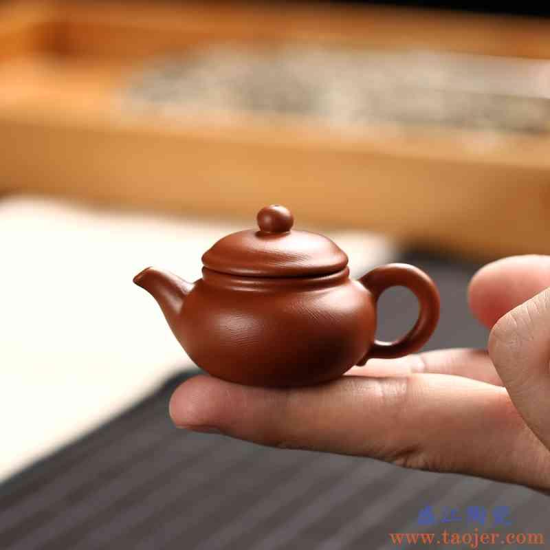 传艺窑迷你小容量紫砂壶创意指尖壶小号袖珍茶玩茶宠摆件可养
