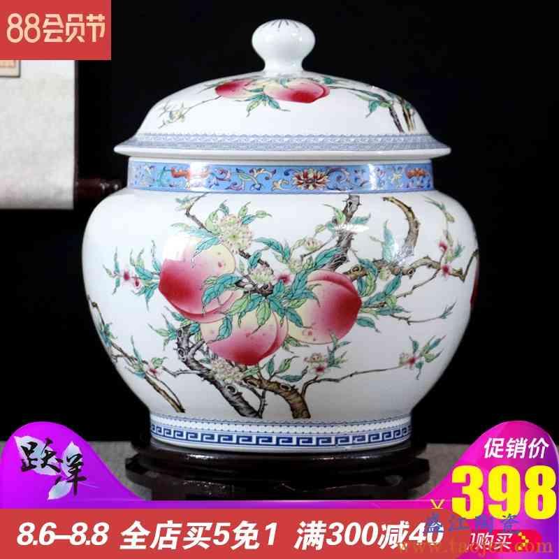 陶瓷储物罐储米缸米桶茶叶罐咸菜泡菜坛10斤装带盖家用防潮防虫