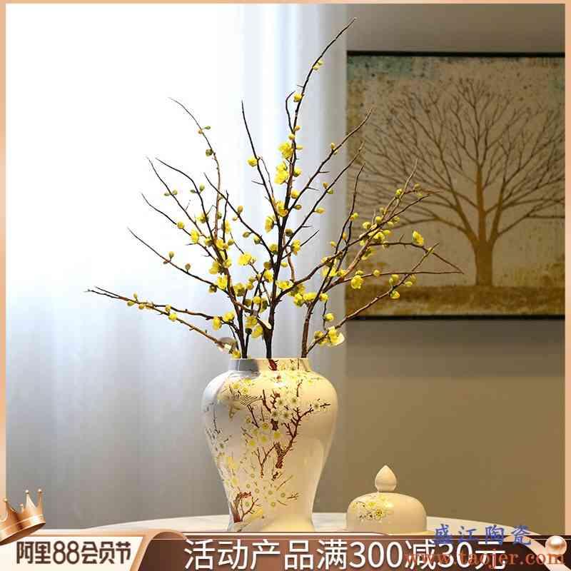景德镇陶瓷玄关台面花瓶摆件新中式将军罐花器摆设客厅电视柜花插