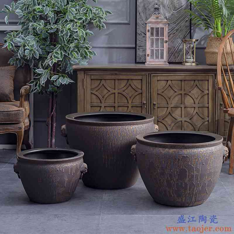 复古景德镇陶瓷大缸狮耳缸养鱼缸老式水缸庭院鱼缸造景风水招财缸