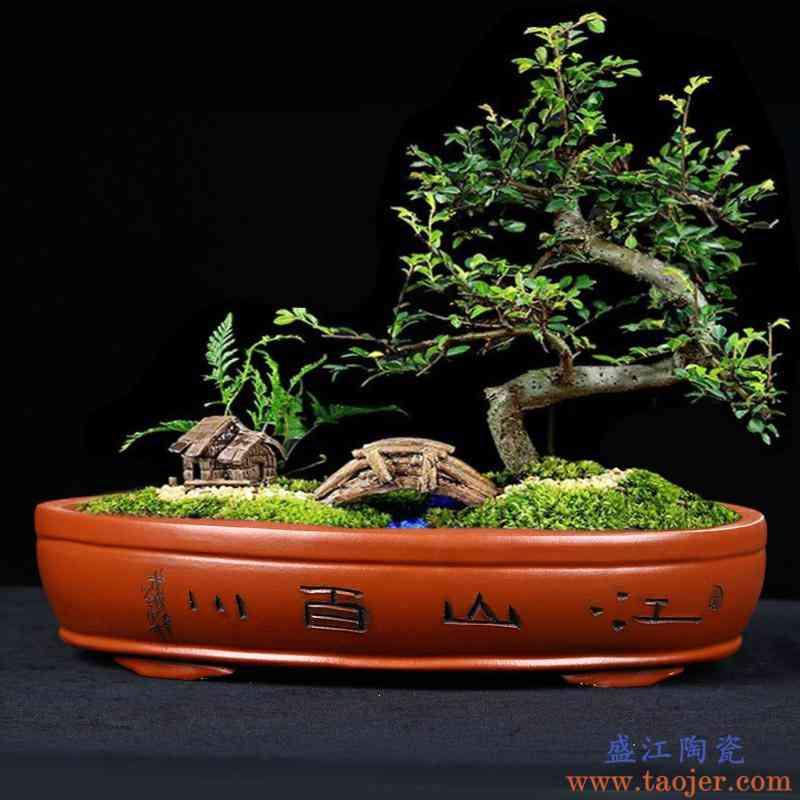 陶土花盆长方形盆景盆大号客厅创意直经60厘米假山植物紫砂陶瓷盆