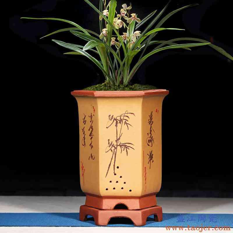 兰花盆紫砂花盆六方形简约室内阳台大号带孔特价陶瓷六角兰花花盆