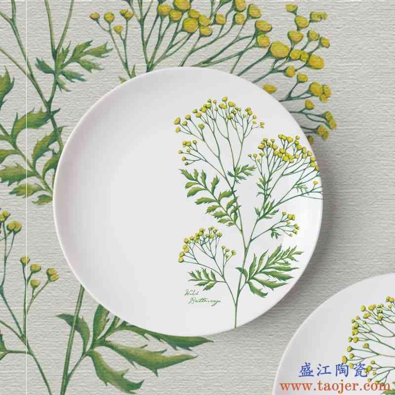 盘子菜盘好看碟子野生植物创意家用果盘托盘骨瓷盘子陶瓷西餐餐具