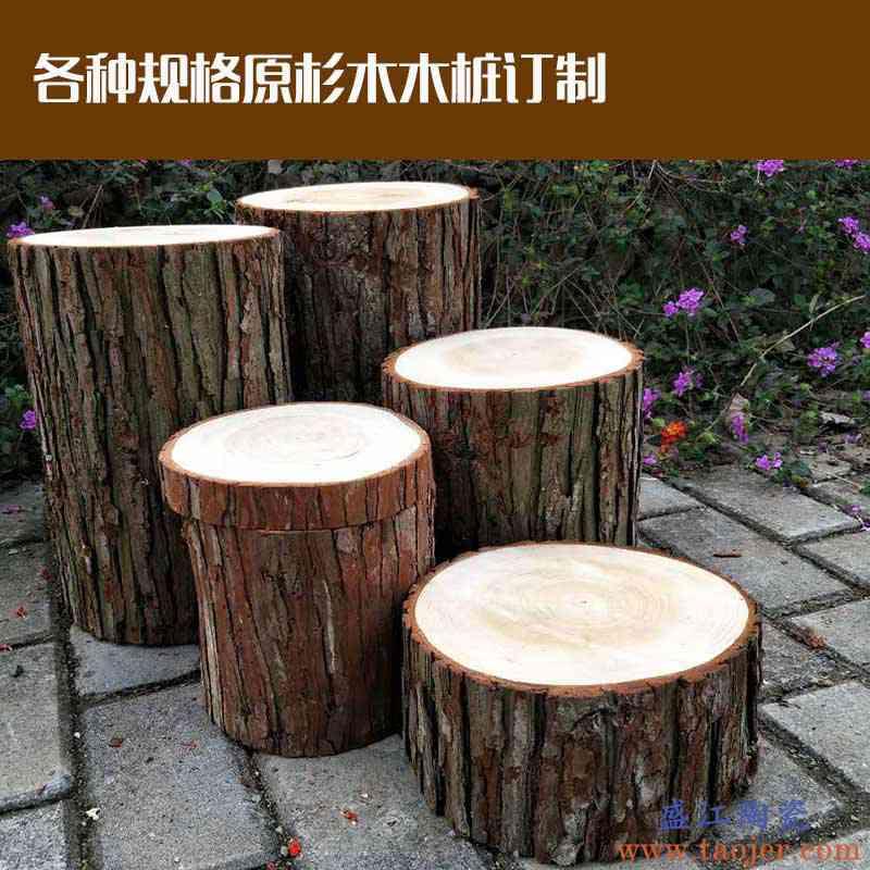 原木头原料木桩底座摆件树桩原木头拍照DIY装饰道具展示栅栏围栏