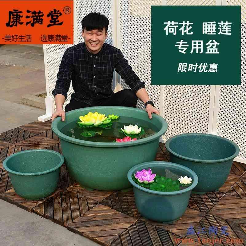 种连藕花盆种睡莲的水缸养睡莲的专用盆养鱼多肉红陶盆连藕种植盆