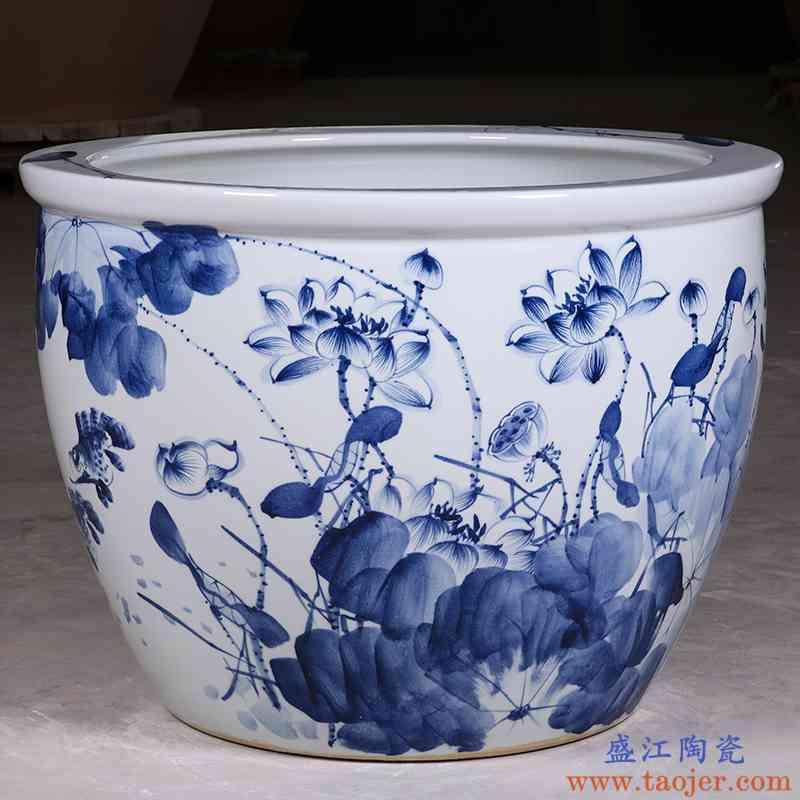 景德镇陶瓷鱼缸1米特大水缸瓷缸睡莲盆荷花缸碗莲锦鲤缸庭院大缸