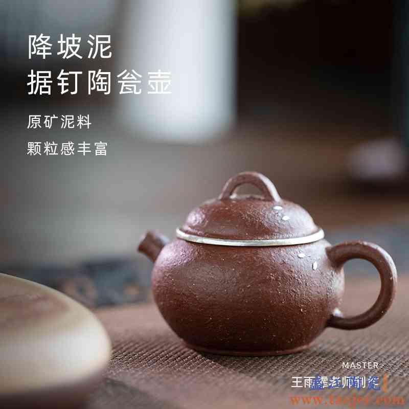 宜兴紫砂壶原矿紫砂降坡泥据钉陶瓮壶王雨霏家用全手工泡茶壶